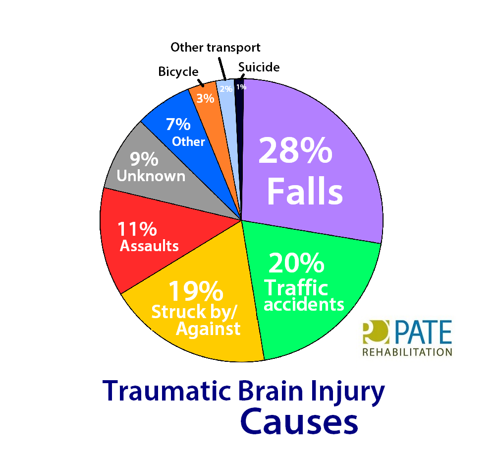 causes of tbi chart